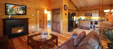 Catkill Hotel - Log Home Lodging