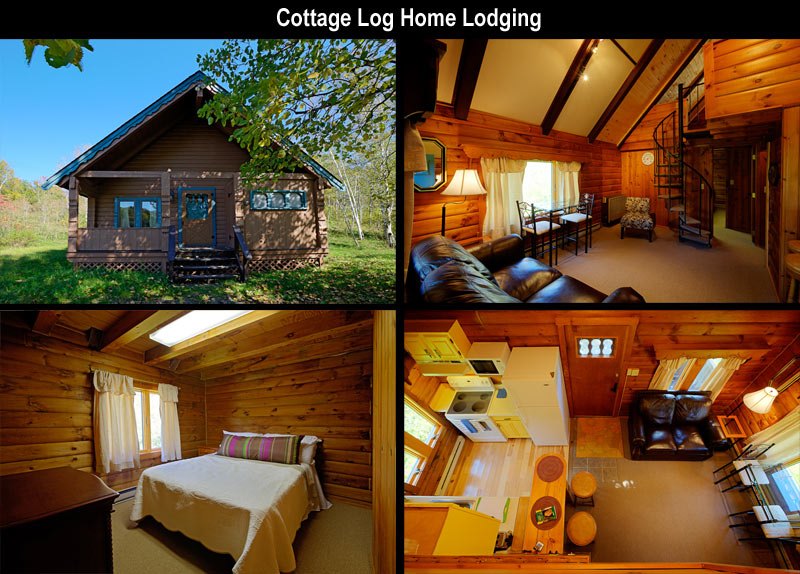 lodging catskill loghomelodging site home mountains catskills hotels com cabins ny hotel log view house rental alta web