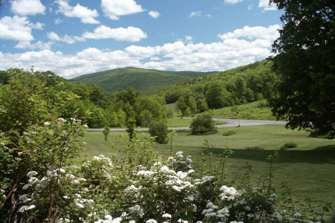 VIEW margaretvilleinn.com web site